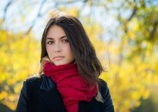 Autumn Portrait Immagini Stock Libere da Diritti