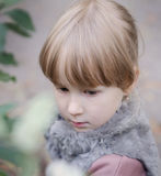 Autumn Portrait Royaltyfria Bilder