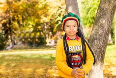 Autumn portrait of African American beautiful child. Happy little black boy with leaves in the park in fall. Stock Photos