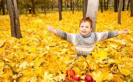 Autumn portrait of beautiful child. Happy little boy with leaves in the park in fall. royalty free stock photography