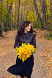 Autumn portrait of a beautiful girl. Royalty Free Stock Photography