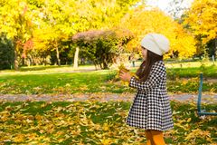 Autumn portrait of beautiful kazakh, asian child. Happy little girl with leaves in the park in fall. Autumn portrait of beautiful child. Happy little girl with Royalty Free Stock Photo