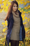 Autumn portrait of a beautiful model with yellow leaves Stock Images