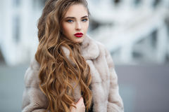 Autumn portrait of the beautiful woman Royalty Free Stock Image