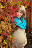 Autumn portrait blond pregnant woman Stock Photography