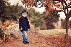 Autumn portrait of the boy Royalty Free Stock Images