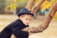 Autumn portrait of the boy Stock Photos