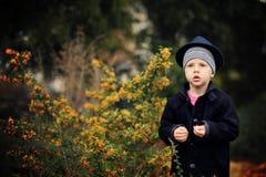 Autumn portrait of the boy Royalty Free Stock Photo