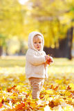 Autumn portrait of child Royalty Free Stock Images