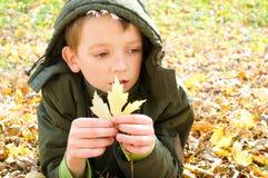 Autumn portrait Royalty Free Stock Photo