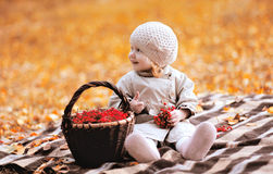 Autumn portrait cute child and basket Royalty Free Stock Images
