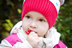 Autumn portrait of cute little girl Royalty Free Stock Photos