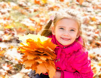Autumn portrait of cute smiling little girl with maple leaves Royalty Free Stock Photos