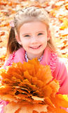 Autumn portrait of cute smiling little girl with maple leaves Stock Photo