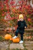 Cute stylish boy royalty free stock image