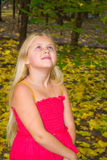 Autumn portrait of a girl. Girl walking on the yellow fallen leaves royalty free stock image