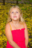 Autumn portrait of a girl. Girl walking on the yellow fallen leaves royalty free stock images