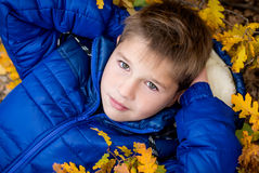 Autumn Portrait  little boy  in leaves Stock Photography