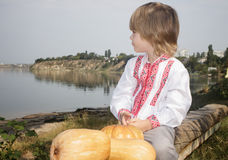 Autumn portrait of a little boy in a white embroidered shirt Royalty Free Stock Image