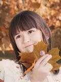 Autumn portrait Stock Image