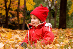 Autumn portrait of a  little girl Royalty Free Stock Image
