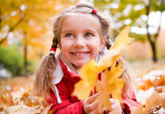 Autumn portrait of a  little girl Stock Images