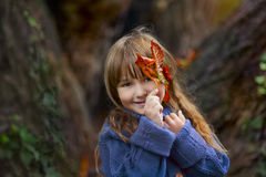 Autumn portrait Royalty Free Stock Image