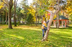 Free Autumn Portrait Of Beautiful Child. Happy Little Boy On The Tree In The Park In Fall. Stock Images - 103780464