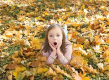 Autumn portrait of surprised beautiful little girl royalty free stock images