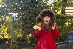 Autumn portrait of surprised curly girl. Kid gathering yellow fall foliage. stock images