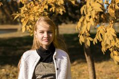 Autumn portrait of young pretty girl student stock photography