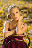 Autumn portrait of young pretty woman on a vintage Stock Image