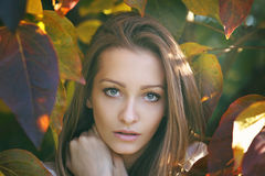 Autumn portrait  of young woman Stock Photos