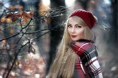 Autumn portrait of a young woman. Stock Photos