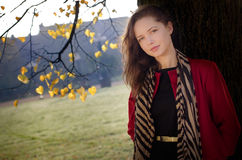 Autumn portret of beautiful girl Stock Image