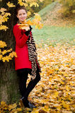 Autumn portret of beautiful girl Royalty Free Stock Image