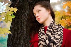 Autumn portret of beautiful girl Stock Images