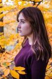 Autumn portret stock images