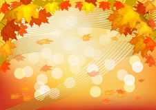 Autumn , postcard . Stock Images