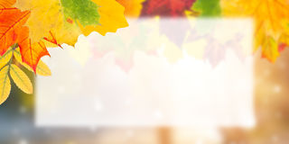 Autumn Postcard for Design Royalty Free Stock Images