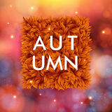 Autumn poster. Stock Photography