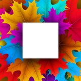 Autumn background with square frame and maple leaves. royalty free illustration