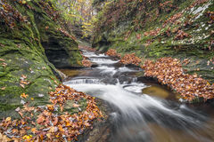 Autumn at the Potholes Royalty Free Stock Image