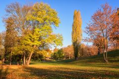 Autumn in Prague, favorite tourist destination Letna park Letenske sady, Czech Republic. Autumn park in sunlight with colorful trees and blue sky, favorite royalty free stock photos