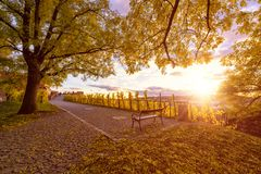 Autumn in Prague, golden sunset at Vyshegrad. Beautiful park in the historic district, Czech Republic, Europe royalty free stock photography