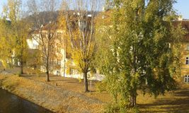 Autumn Prague. View of river bank in Prague in autumn Stock Photography