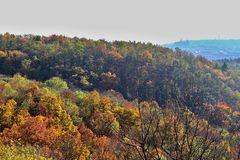 Autumn Prague. Yellow, red, orange, green and brown trees in Prague - Troja forests, sun is shining and hazy Prague castle is in the background Stock Photo