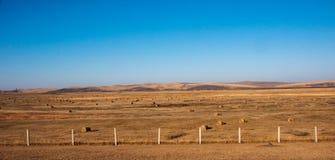 Autumn Prairie Lizenzfreies Stockbild