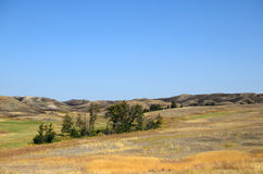 Autumn in Prairie - beauty of nature. Autumn in Prairie: few trees and grass of all colors - beauty of nature Stock Photo