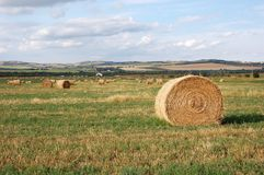 Autumn prairie and straw piles Stock Photos
